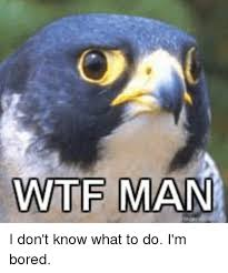 I Don T Know Man Meme - wtf man i don t know what to do i m bored bored meme on sizzle