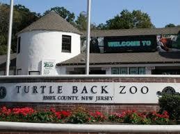 turtle back zoo light show 2017 turtle back zoo hiring for seasonal jobs west orange nj patch
