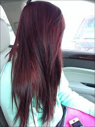 25 trending burgundy brown hair color ideas on pinterest dark