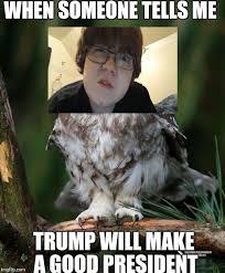 Owl Memes - owl meme generator imgflip