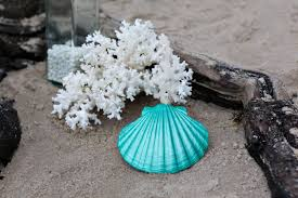 beach christmas ornament beach decor scallop shell holiday