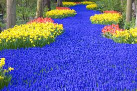 images of beautiful gardens most beautiful gardens in the world women hairstyles makeup