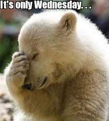 Funny Memes About Wednesday - damn its only wednesday funny meme funny memes