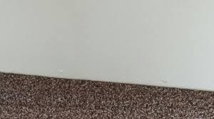 Mohawk Carpet Samples Top 10 Reviews Of Home Depot Carpet