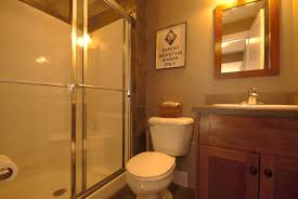 elegant basement bathroom renovation ideas and remodel