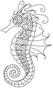 seahorse coloring u2026 pinteres u2026