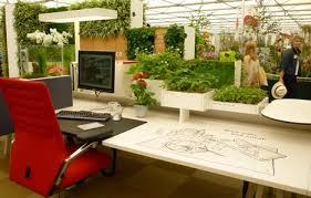 plantes bureau placez les plantes sur votre bureau pour réduire le stress au