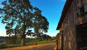 Two Barns House Domaine Serene Estates Two Barns Vineyard