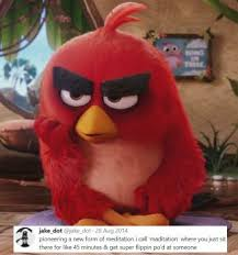 Angry Birds Memes - angry birds movie favourites by mixelfangirl100 on deviantart