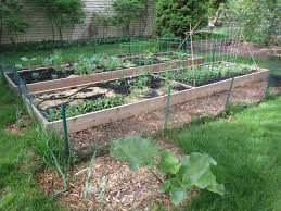 planting with a plan in the vegetable garden 2014 simplicitysoil