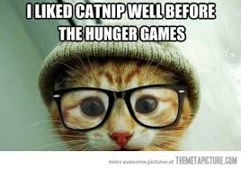 Hipster Kitty Meme - hipster kitty the meta picture
