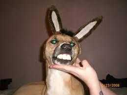 Big Teeth Meme - a set of donkey teeth and ears from shrek imgur
