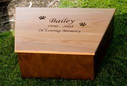 dog caskets choosing the right pet casket