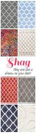 Cheap Shag Rugs 65 Best Rugs Images On Pinterest For The Home Zebra Rugs And