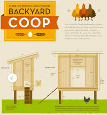 120 best urban chicken coop images on pinterest backyard