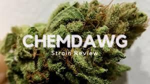 wedding cake leafly chemdawg cannabis strain review ismoke