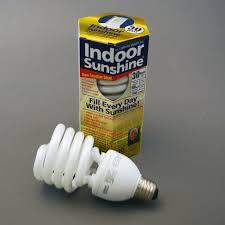 sunlight light bulbs for depression 30 watt indoor sunshine spiral bulb 2 pack indoor sunshine lights
