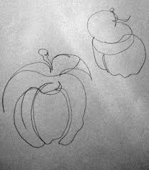 drawn apple still life pencil and in color drawn apple still life