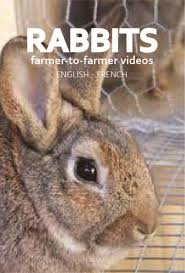 rabbit dvd distribution access agriculture