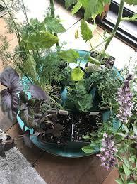 diy skinny deck gardening beds reluctant entertainer