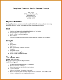 Summary For Resume Examples Customer Service by Examples Of Resume Summary Statements About Professional Style
