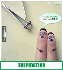 Meaning Of Meme In English - quotes about trepidation 45 quotes