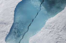 how melting sea ice is changing the arctic and fuelling global