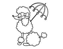 neoteric design inspiration poodle animal coloring pages dog