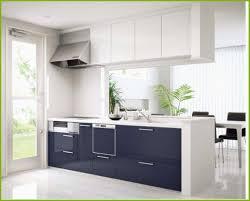Modern Kitchen Cabinets Nyc Modern Kitchen Cabinets New Kitchen Cabinets