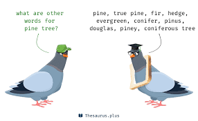 terms pine tree and pinus similar meaning