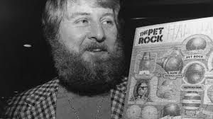 Pet Rock Meme - the pet rock captured a moment and made its creator a millionaire