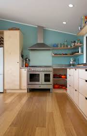 Kitchen Laminate Design by Best 25 Plywood Kitchen Ideas On Pinterest Plywood Cabinets
