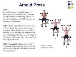 Bench Press Lock Elbows Arnold Press Step 1 Sit On A Flat Bench And Hold A Pair Of
