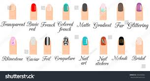 manicure types infographic nail design nail stock vector 450246364