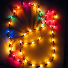 thanksgiving turkey window plaque lights northern lights and trees