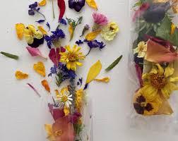 Real Flower Petal Confetti - real flower petals etsy
