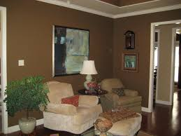 Nice Living Rooms Nice Colors For Living Room Insurserviceonline Com