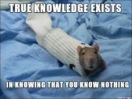 Sock Meme - sock rat meme on imgur