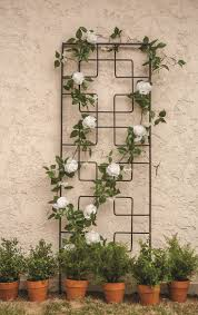 small plant supports pergola rambling vine supports awesome pot trellis allen roth