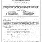 examples of resumes 81 breathtaking resume format students