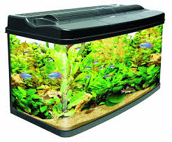 interpet fish pod glass aquarium fish tank 120 l co uk