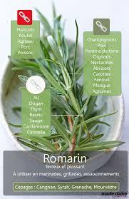 herbe cuisine comment utiliser le romarin en cuisine en cuisine petits jardins