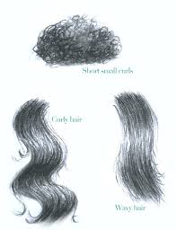 how to draw secrets learn how to draw realistic hair art