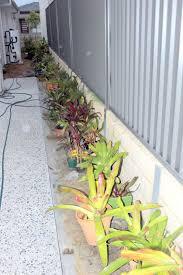 Organic Vegetable Gardening Annette Mcfarlane by Missy U0027s Garden