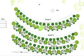 Fruit Tree Garden Layout Projects Geoff Lawton Permaculture And Gardens