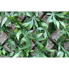 wonderwall artificial laurel leaf trellis 100 x 200cm