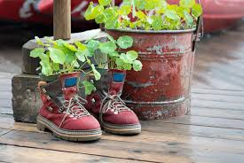 Plants And Planters by 31 Shoe And Boot Planter Ideas Photos