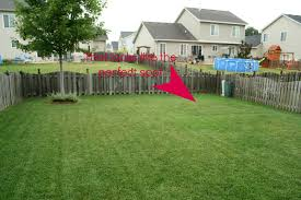 leveling a yard