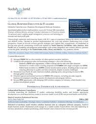 executive resume service global business executive resume u2014 premium executive resume