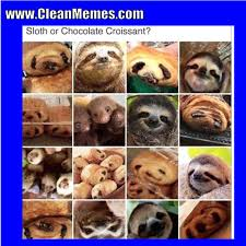 Memes Sloth - sloth clean memes the best the most online